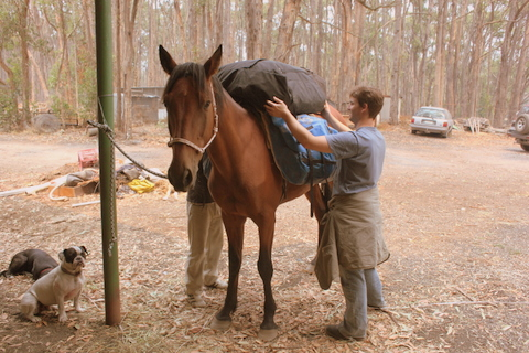Testing out the pack saddle and the pack horse.